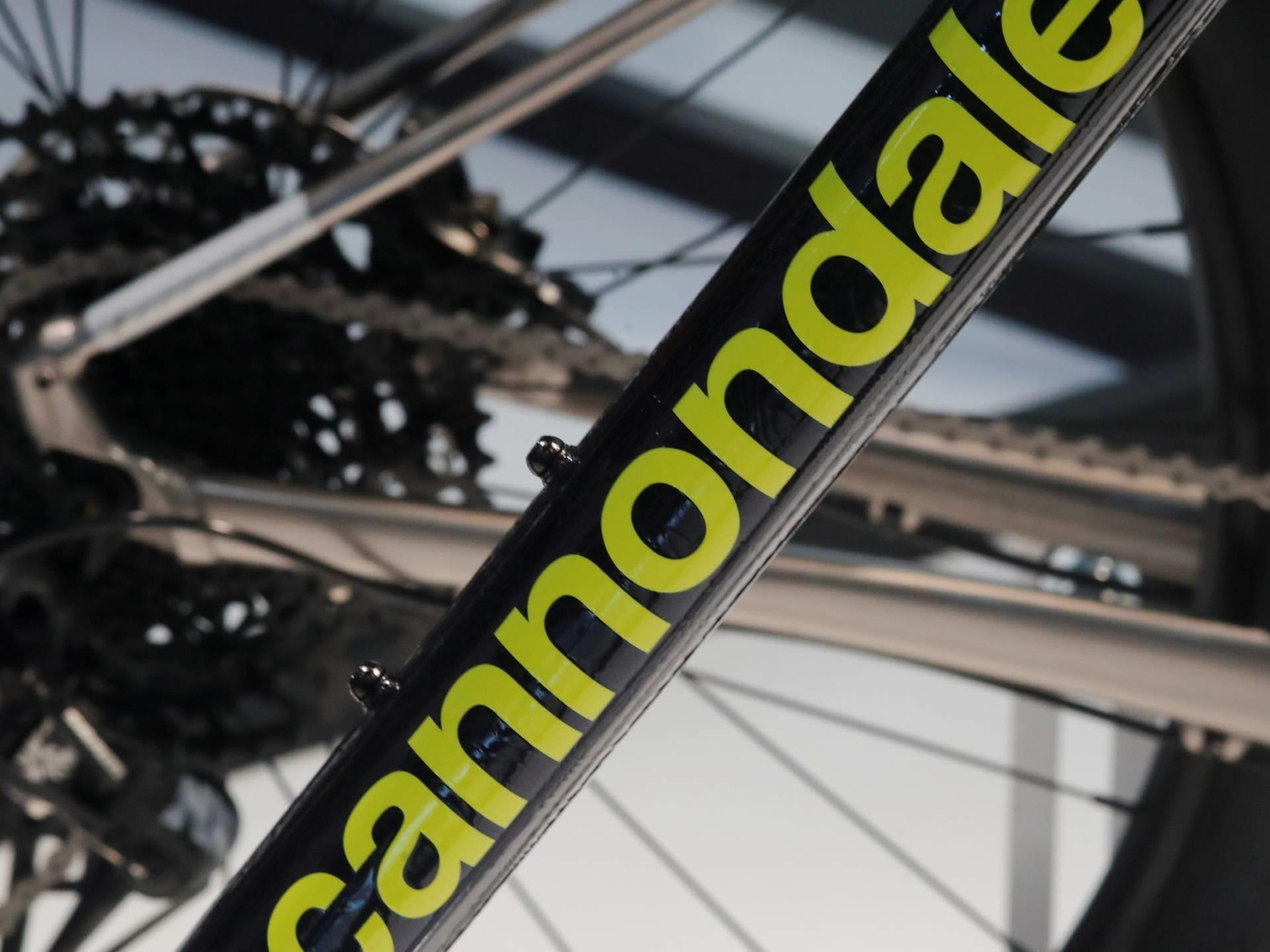 Nederlands bedrijf wordt met overname grootste fietsproducent ter wereld