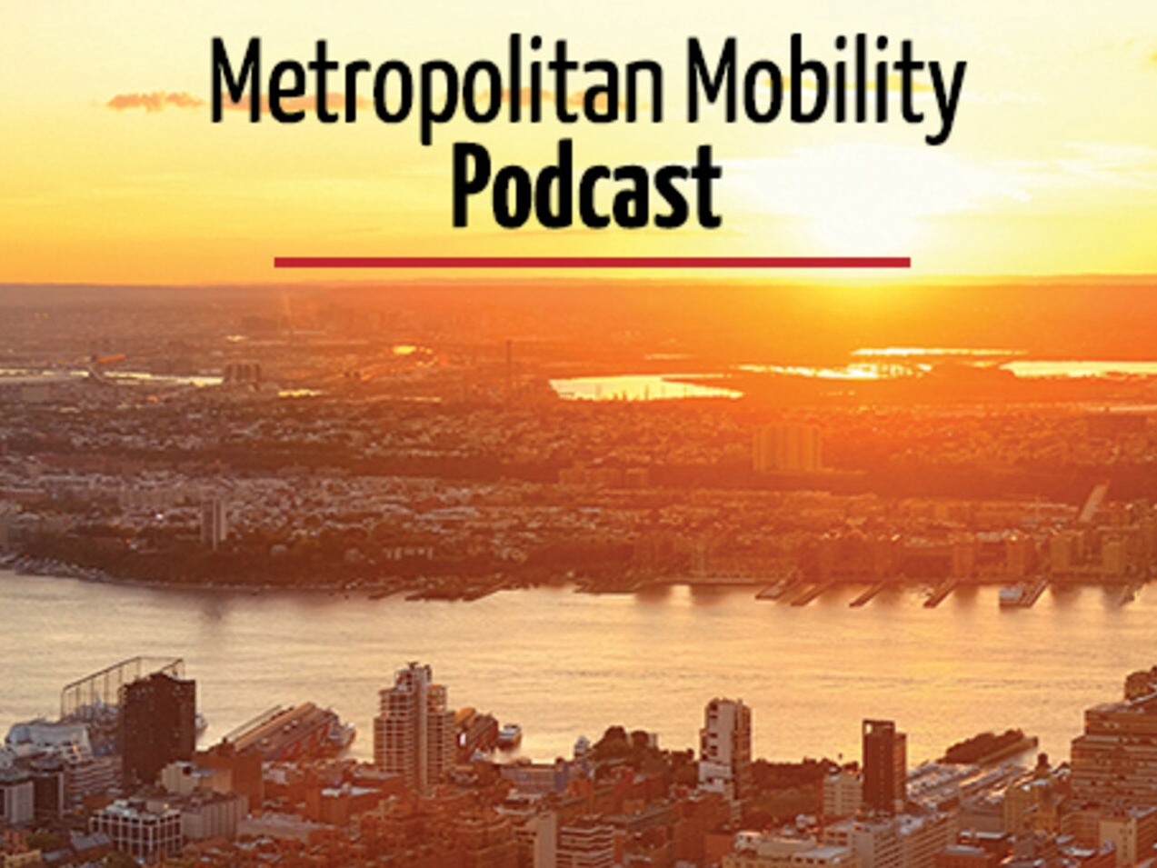 Sharing mobility: competing or completing public transport in cities?