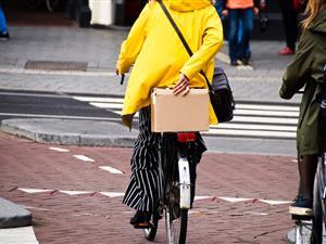 Smart Mobility - Dutch Reality